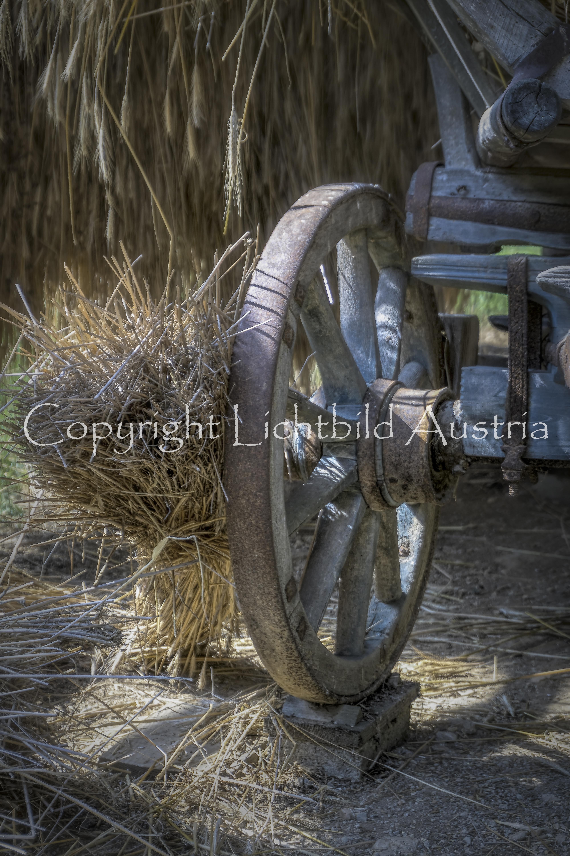 Das Wagenrad