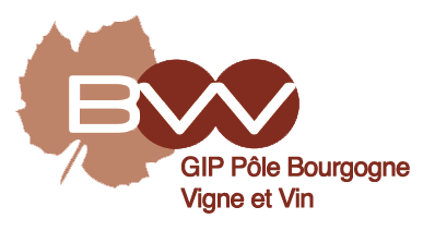 Exemple d'image logo