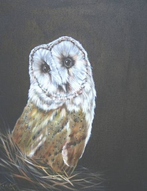 https://0501.nccdn.net/4_2/000/000/001/b9b/bright_owl-493x640.jpg