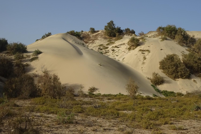 Dunes-de-Morinho