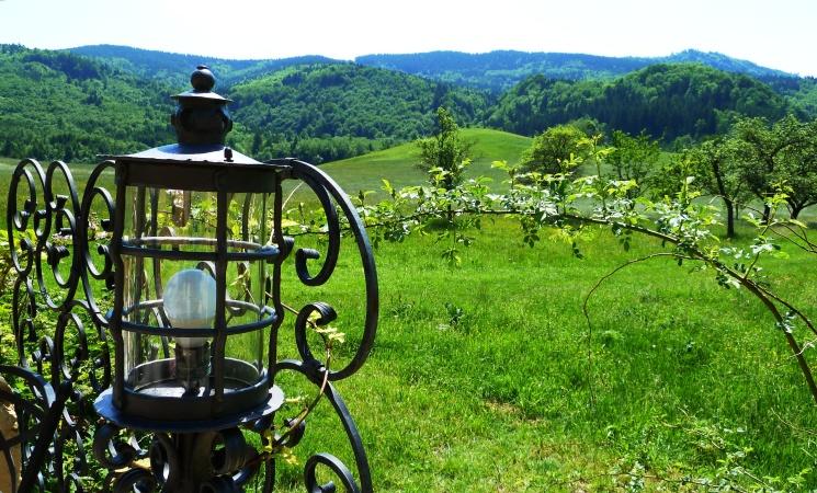 Henndorfer Wald - vom Gastgarten in Kienberg aus gesehen