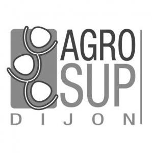 Exemple d'image logo