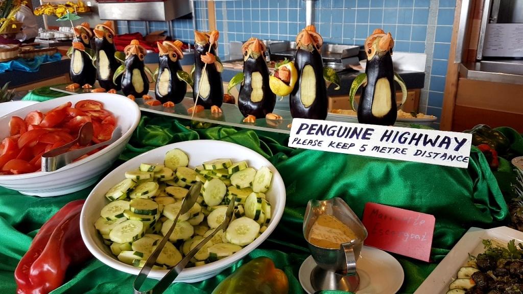 Am Pinguinhighway