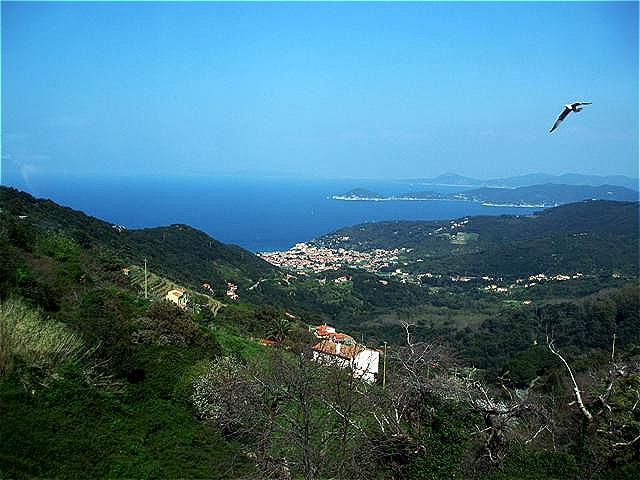 Blick von Marciana Alta auf Marciana Marina