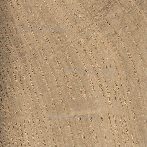 English Oak (air dried) £35-£55 per cu/ft
