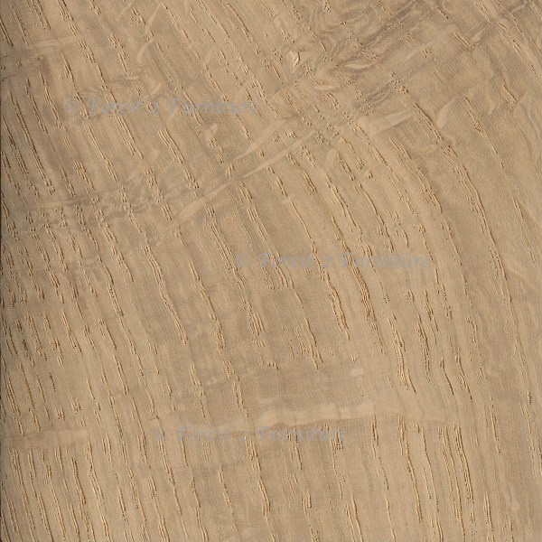 English Oak (square edged boards)