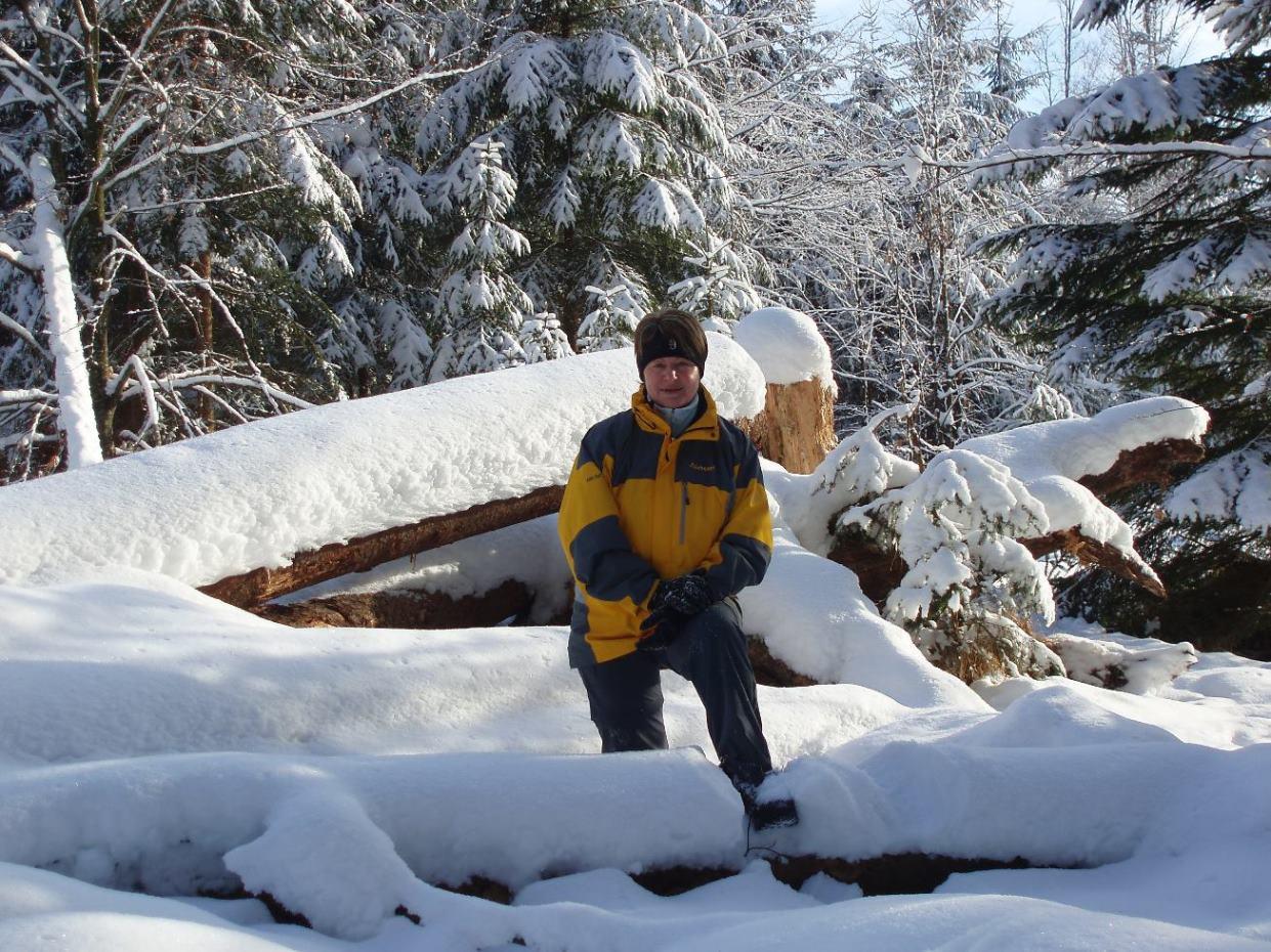 Winter im Kobernaußerwald