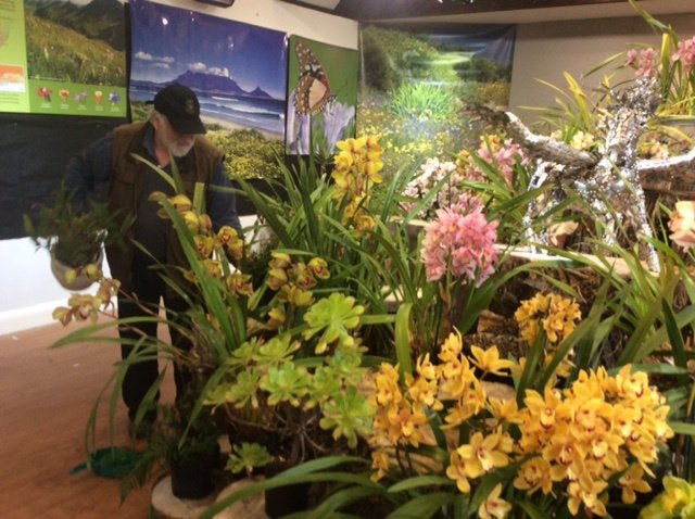 Orchids were also included in the display.