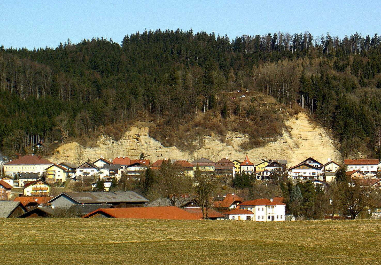 """Projekt """"Wein auf dem Schlossberg"""""""