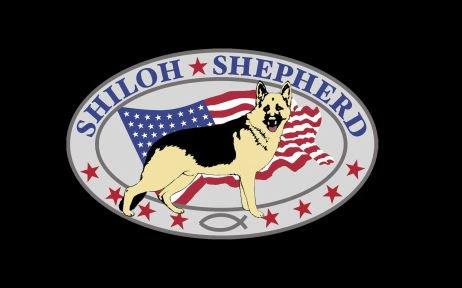 Shiloh-Shepherd Europa