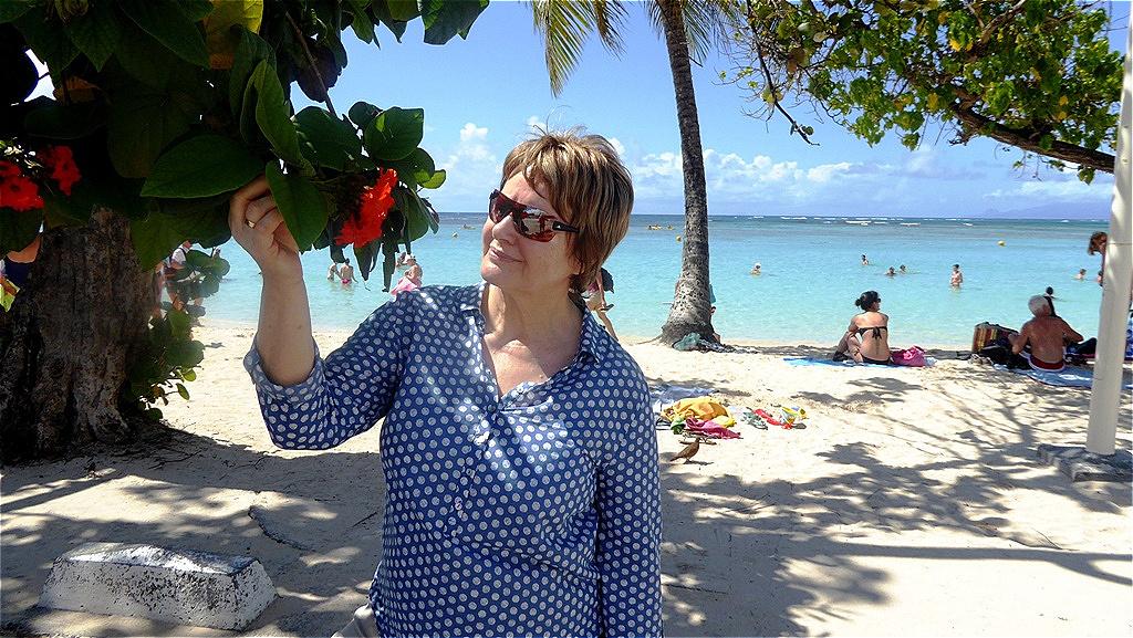 Blüten der Karibik !