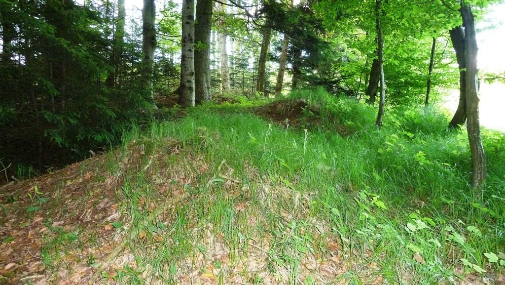 Gras überwuchert das keltische Hügelgrab