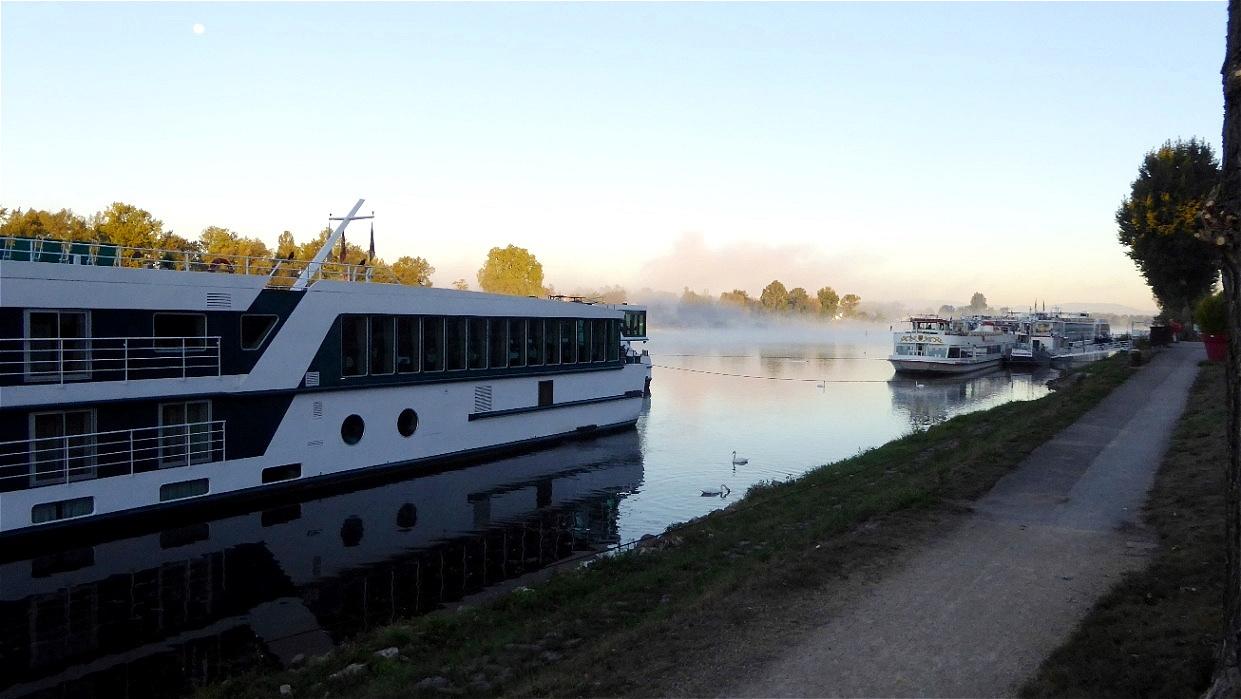 Früher Morgen in Breisach