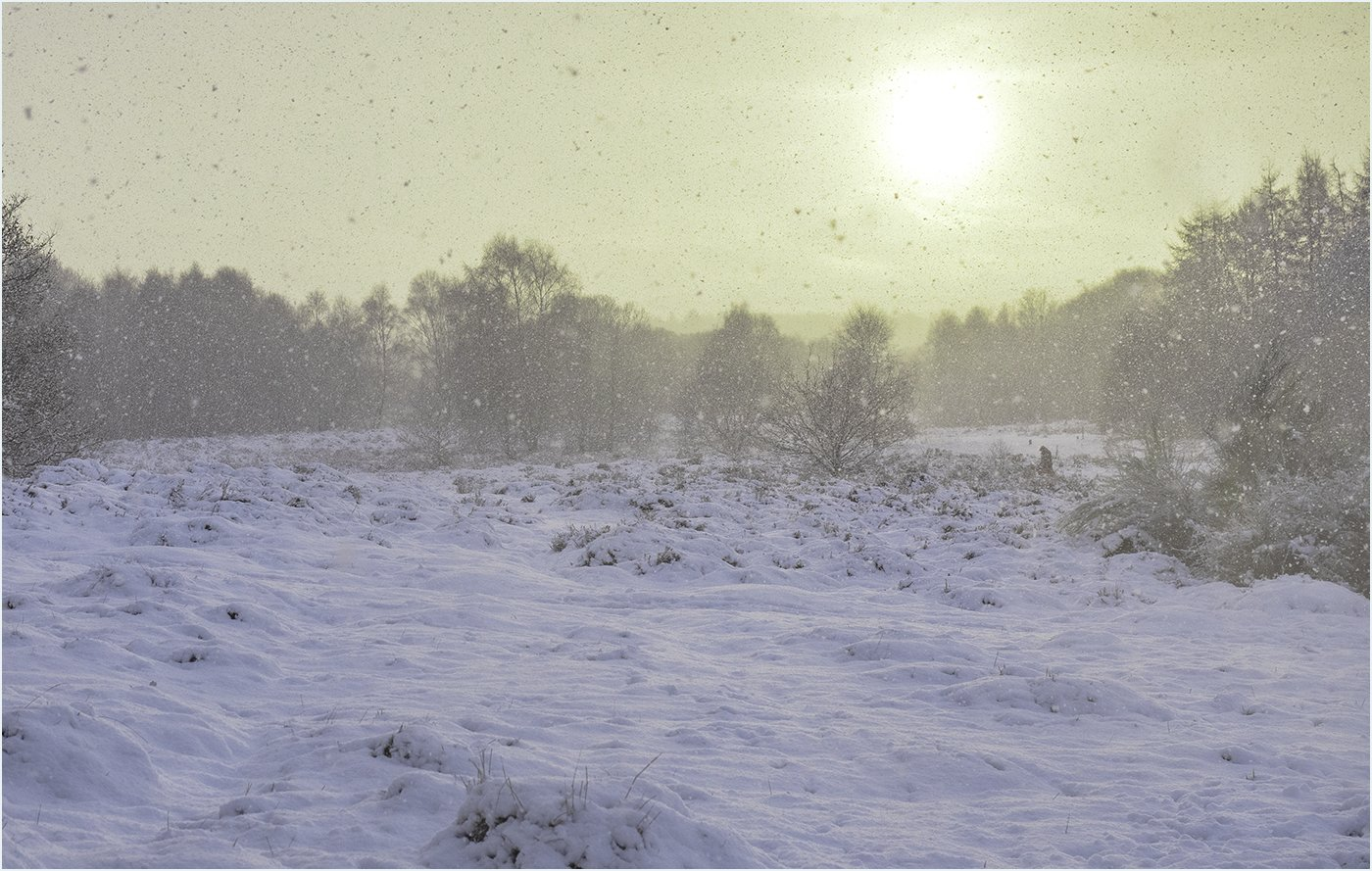 Commended: Sun and Snow (Peter Mullen)