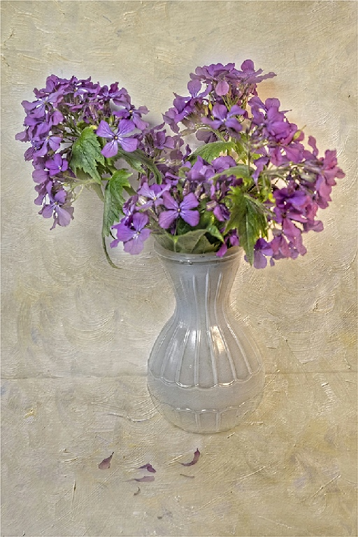 Commended: Vase of Flowers (Sue Tucker)