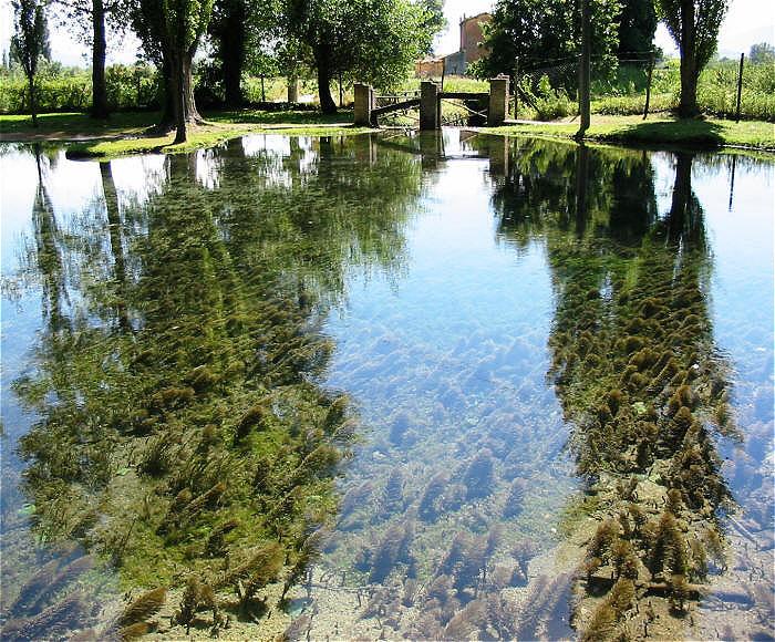 Heute befindet sich hier ein Naturpark und botanischer Garten