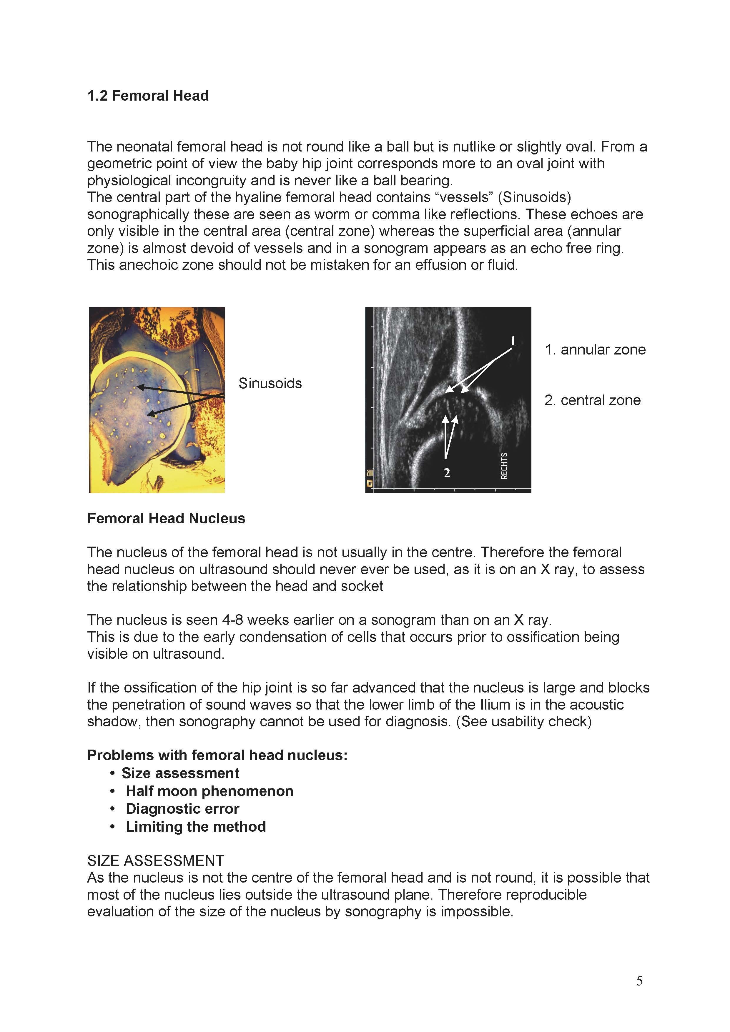 https://0501.nccdn.net/4_2/000/000/019/c2c/ManualHip-Sonography--Ma_rz-2017-1_Seite_05-2481x3508.jpg