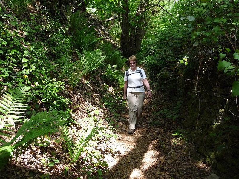 Highlight - der Pilgerweg  führt hinunter durch  urtümliche, wilde Natur
