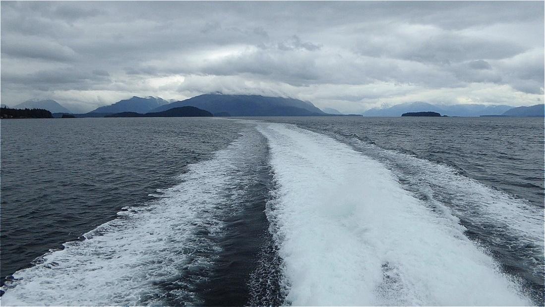 Auf einem Katamaran geht es hinaus zur Walbeobachtung