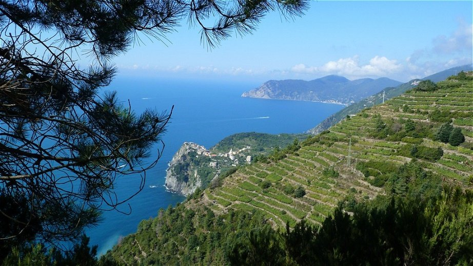 Als einziges Dorf der Cinque Terre liegt Corniglia nicht direkt am Meer, sondern auf einem Bergvorsprung in etwa 100 m Höhe