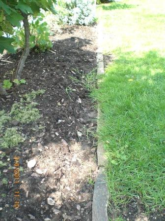 Rasenkantensteine