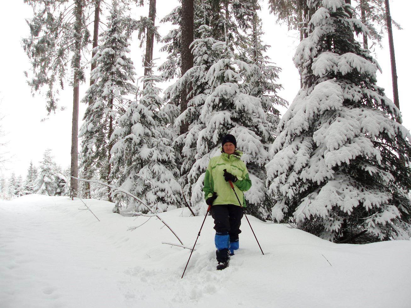 Wanderung durch den verschneiten Wald