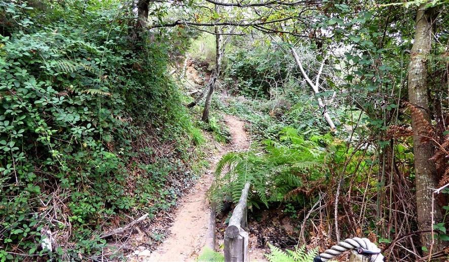 Abstieg nach Sasso Pisano