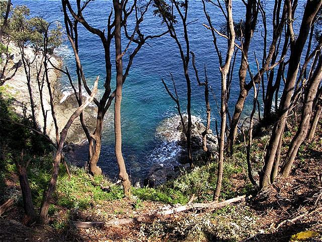 Der Wanderweg führt an der Steilküste entlang