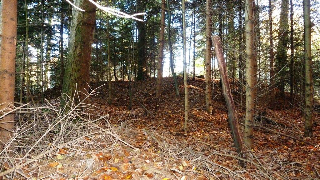 Hügelgrab - Ansicht Westseite