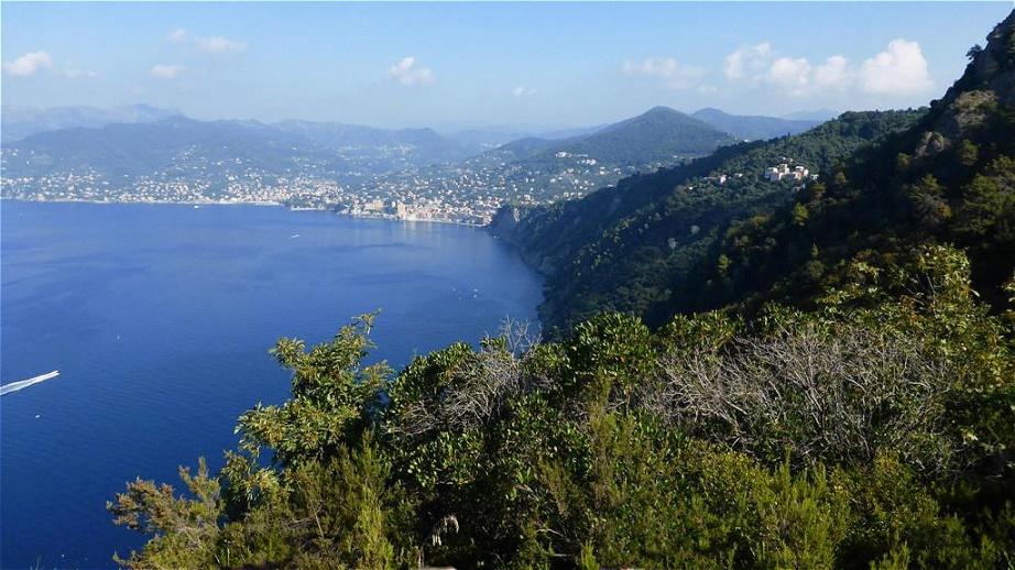 Blick zurück auf Camogli