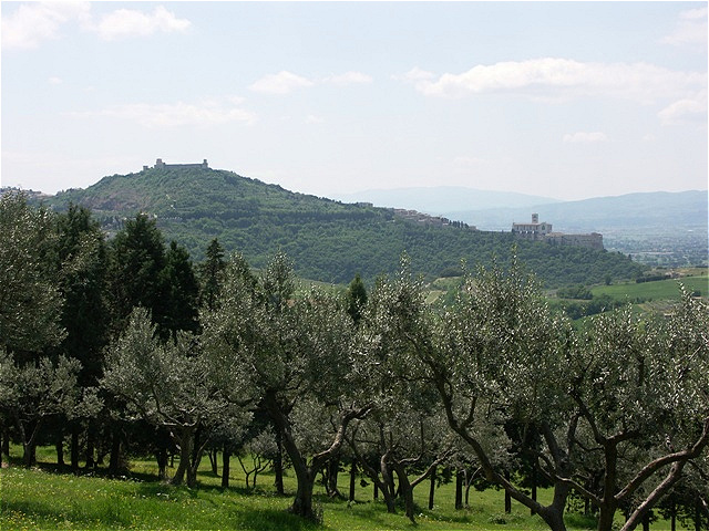 Erster Blick auf Assisi Links oben das Kastell, rechts unten die Ober- und Unterkirche