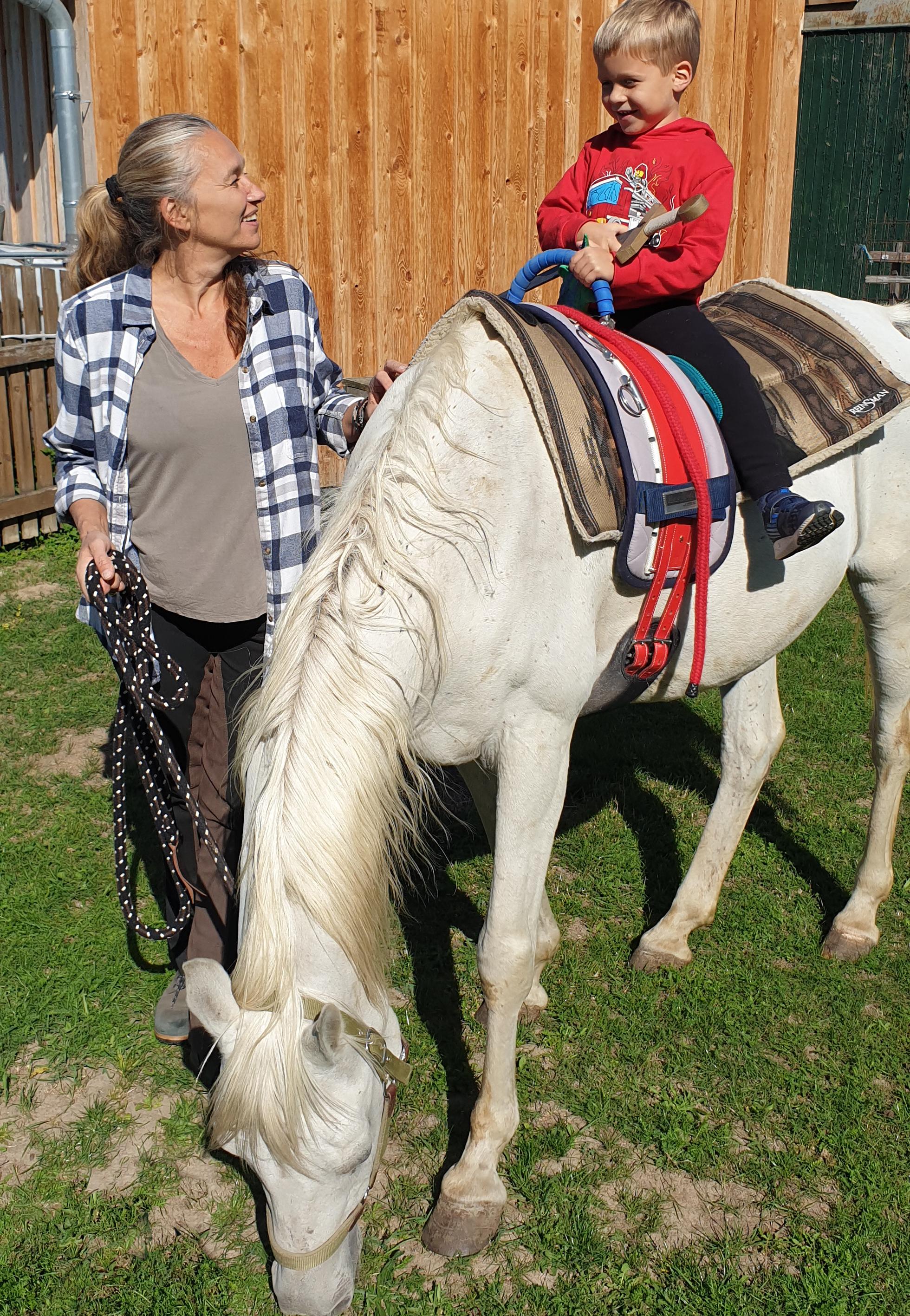 Pferde pic4