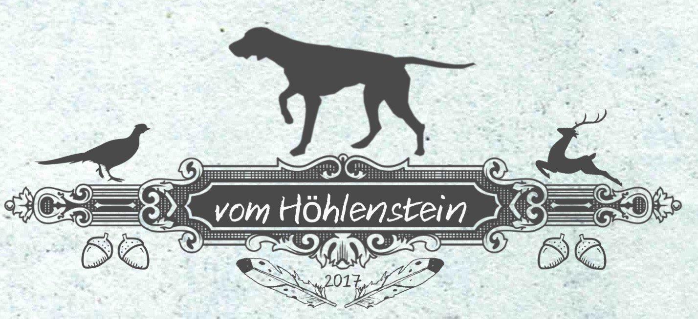 Deutsch Kurzhaar vom Höhlenstein