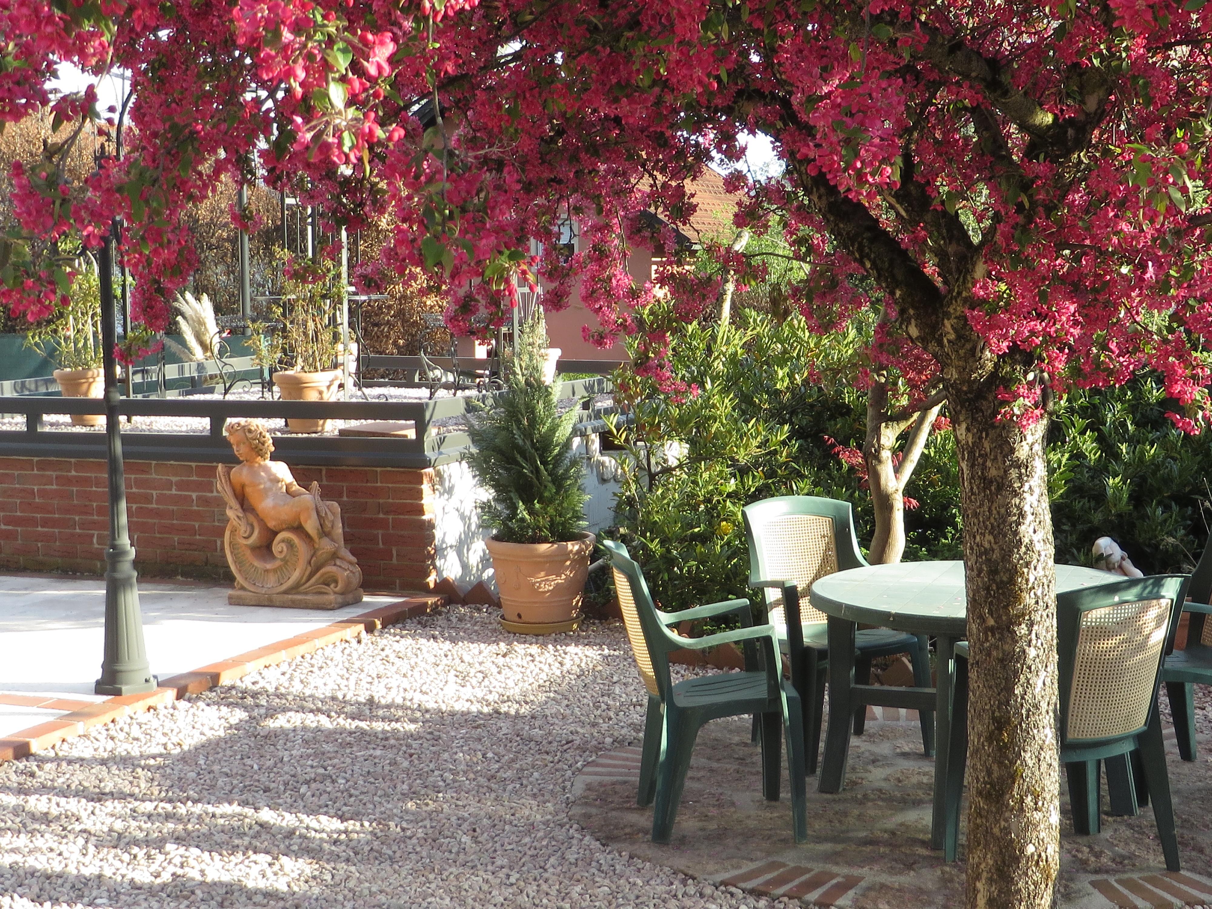 https://0501.nccdn.net/4_2/000/000/038/2d3/Sonnenvilla-Salzburg-Garten2-4000x3000.jpg