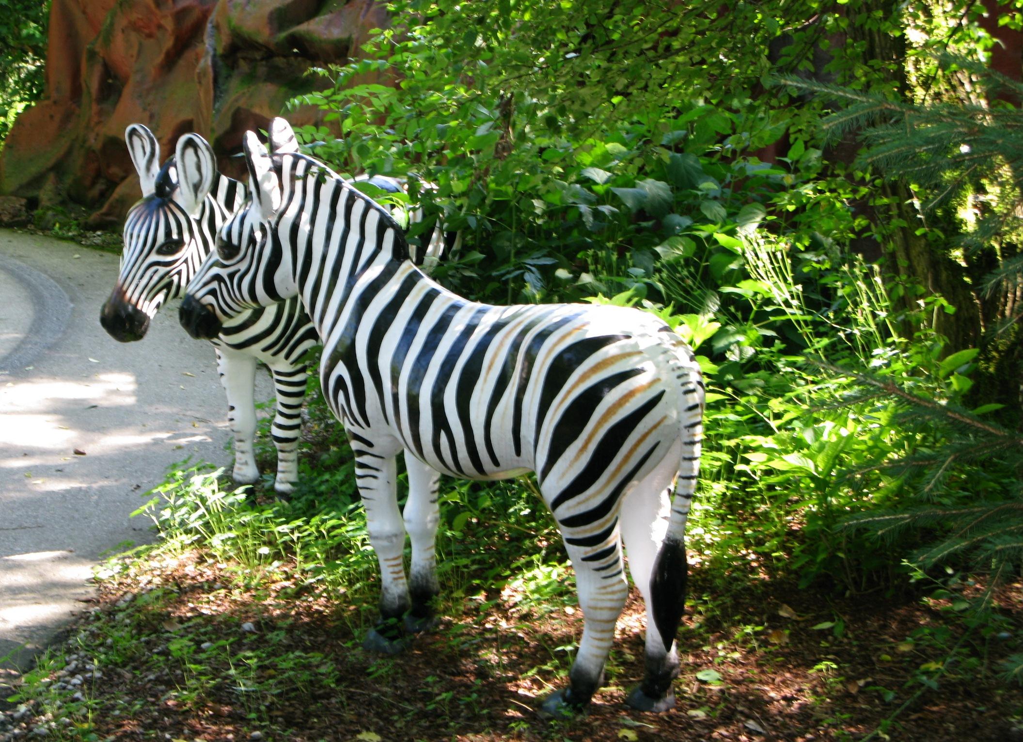 https://0501.nccdn.net/4_2/000/000/038/2d3/Zebras-2111x1531.jpg