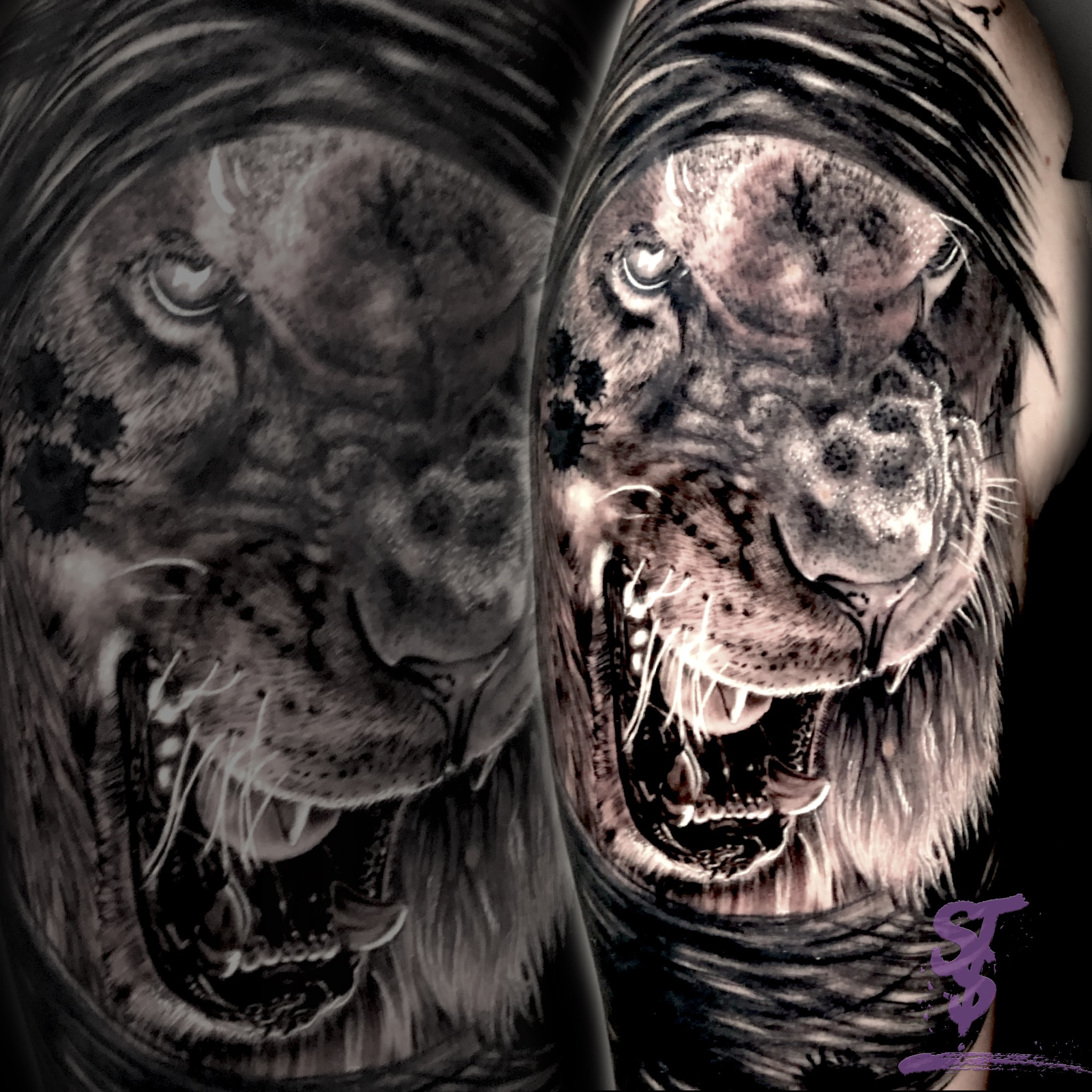 Lion Löwe angry böse Tattoo