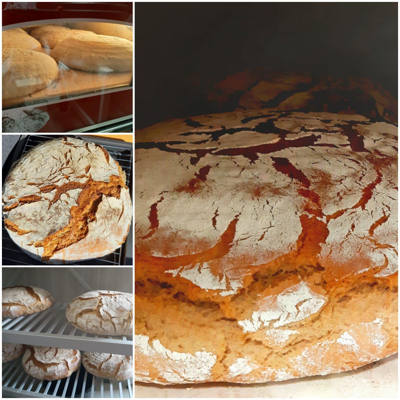 Frisches selbstgebackenes Brot