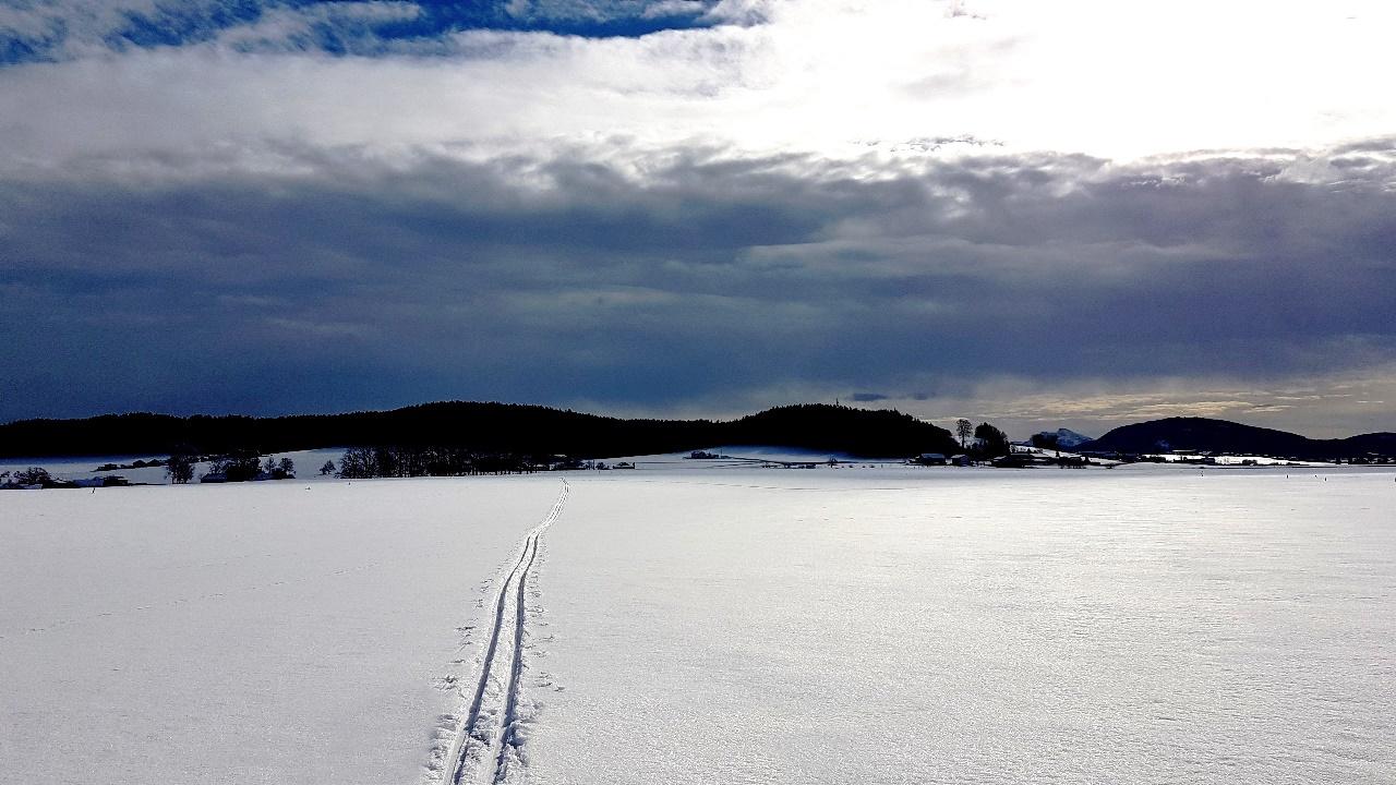 Wolkenbank über dem Krenwald