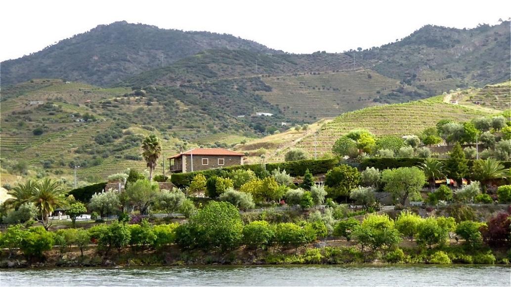 """In der Region """"Douro Superior"""" ist das Klima deutlich trockener !"""
