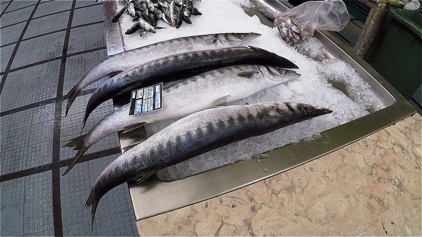 Frischer Fisch auf Eis !