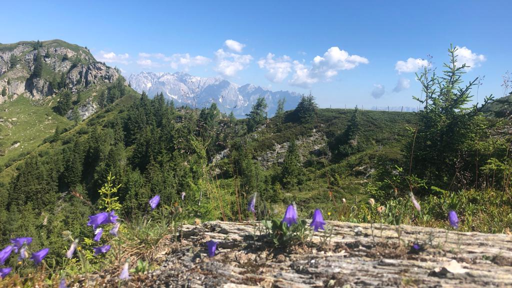 2020_08_01 Berge um Dorfgastein