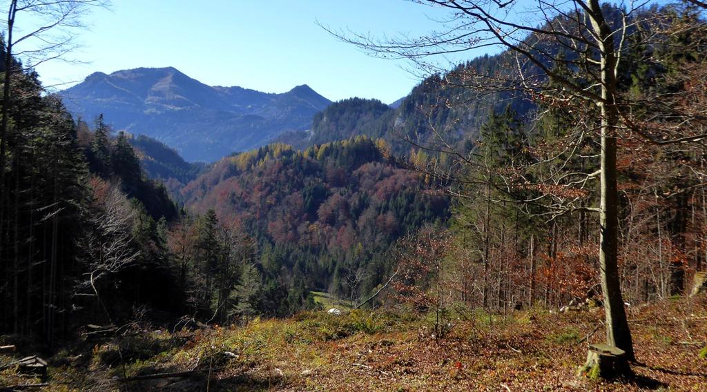 Südblick auf das Zwölferhorn