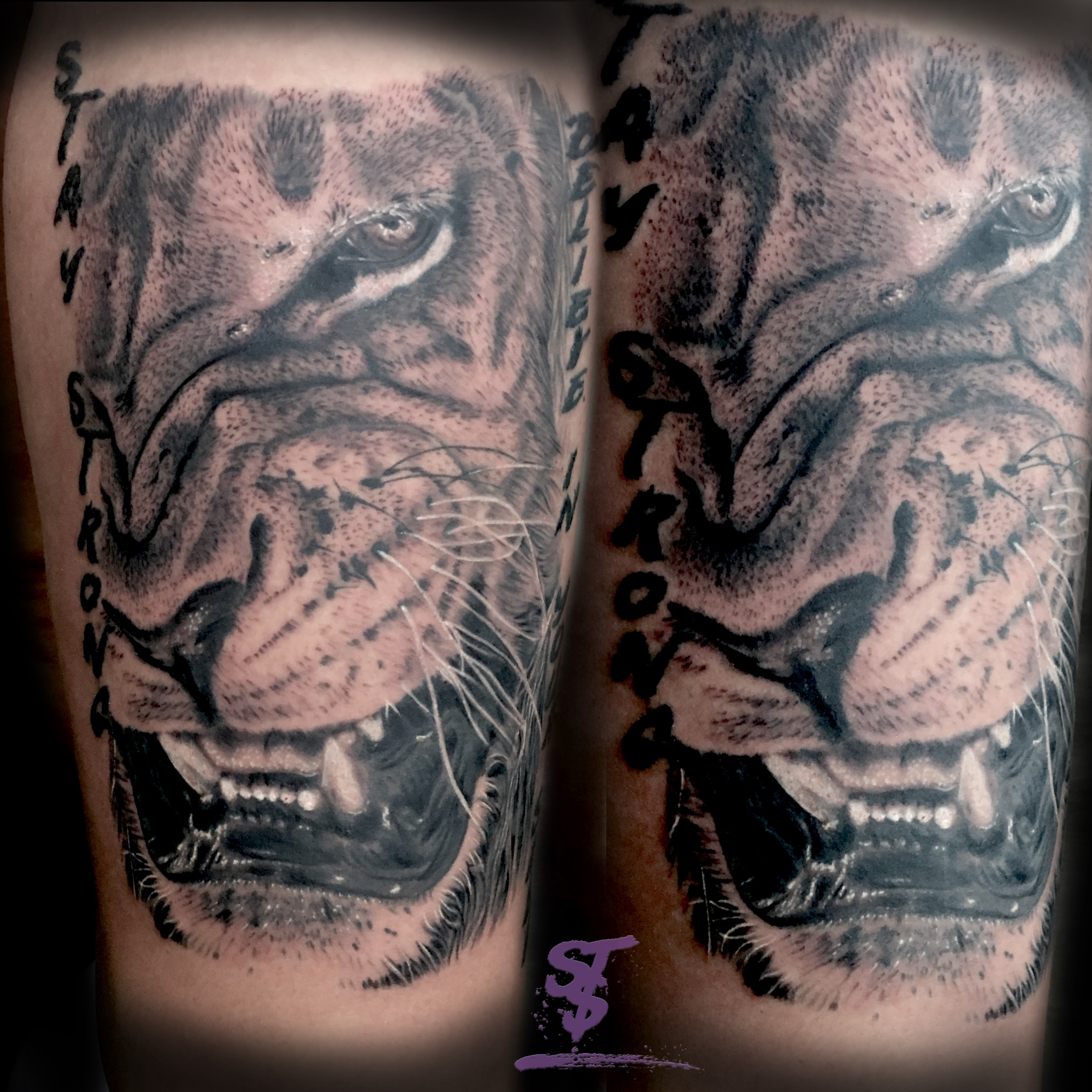 lion löwe böse angry black white tattoo