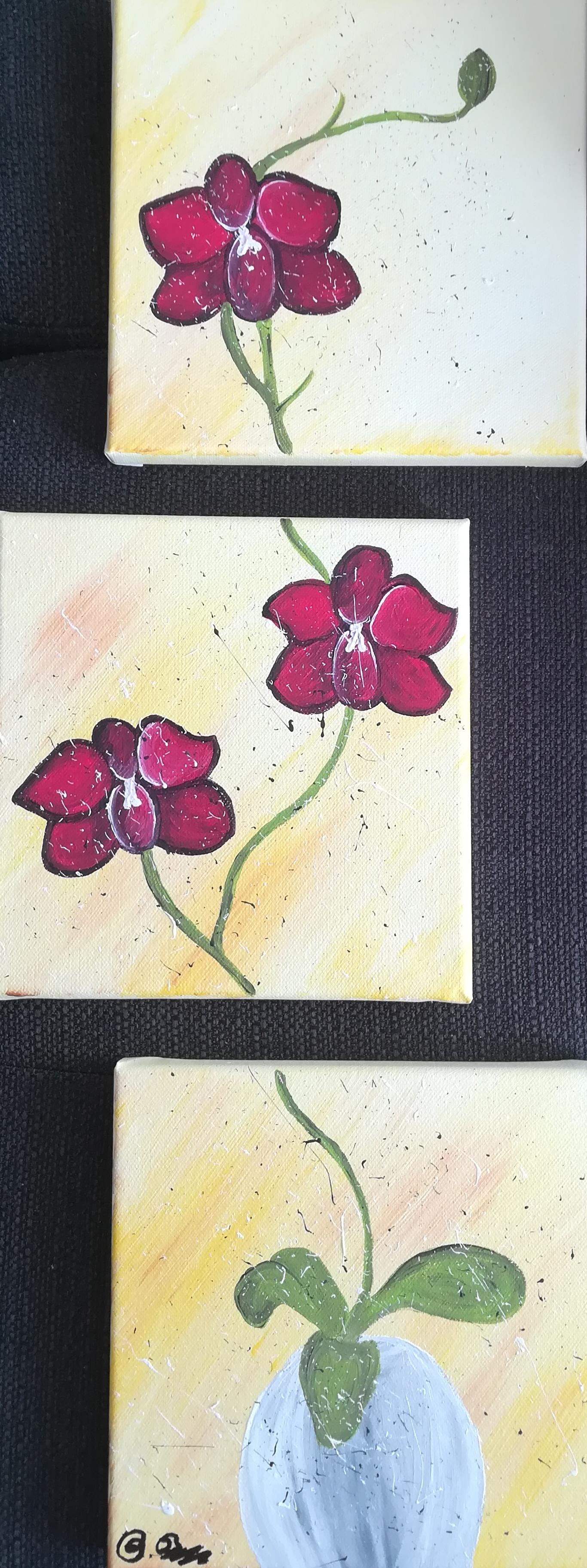 https://0501.nccdn.net/4_2/000/000/04b/787/orchidee.png