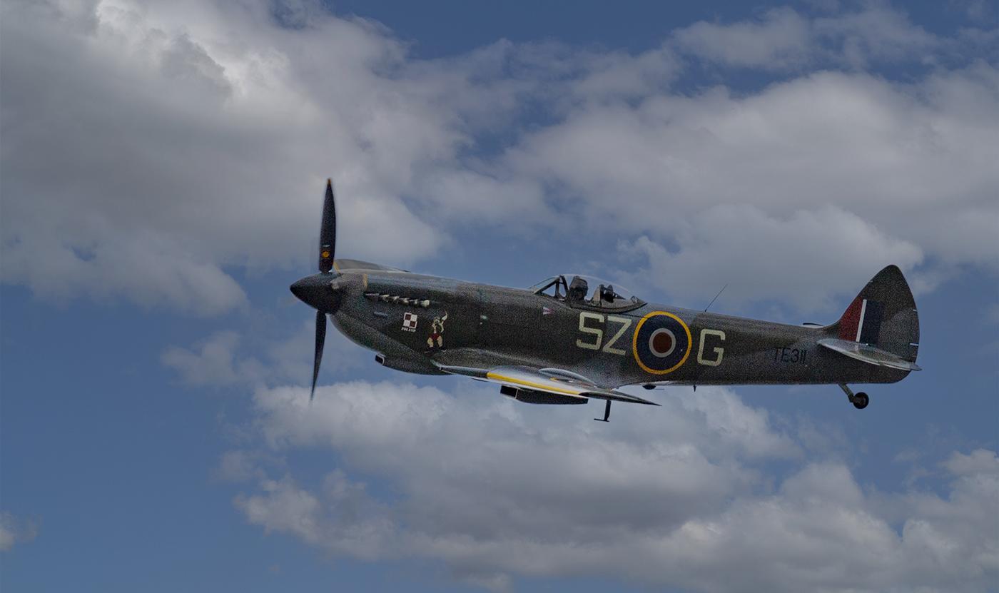 Highly Commended: Spitfire (Tim Weber)