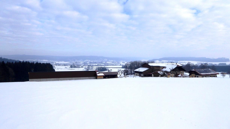 Blick nach NO in Richtung Friedburg