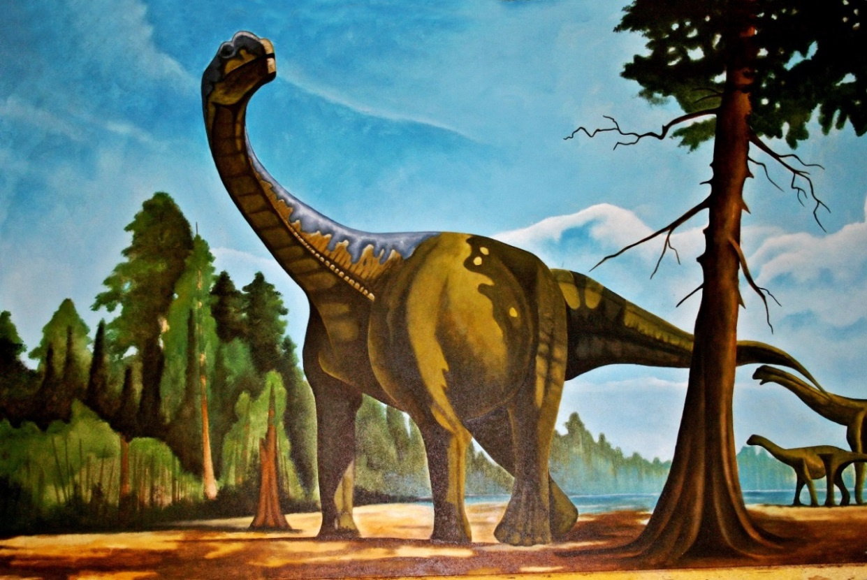 Der Brachiosaurus