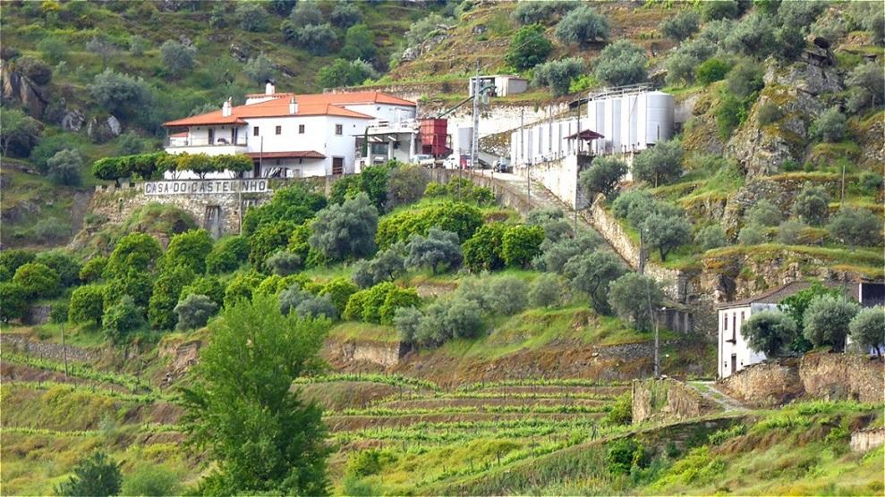 """Weingut """"Casa do Castelinho"""""""