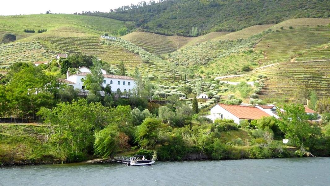 Anbau von Wein und Obst