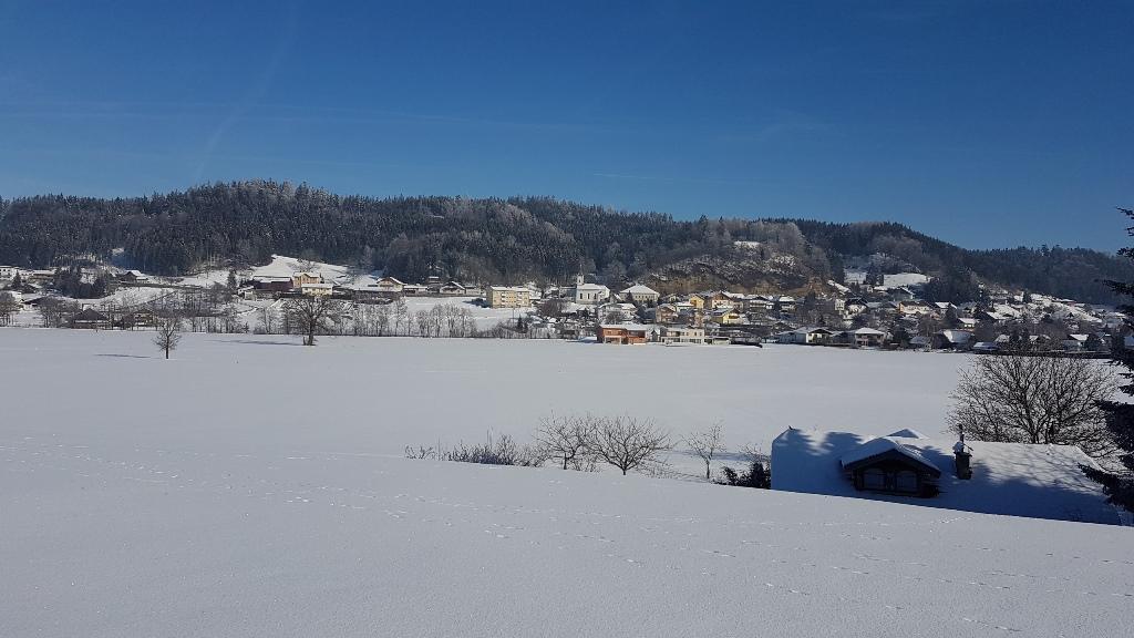 Friedburg-Panorama